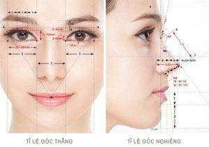 Cấu trúc mũi s-line